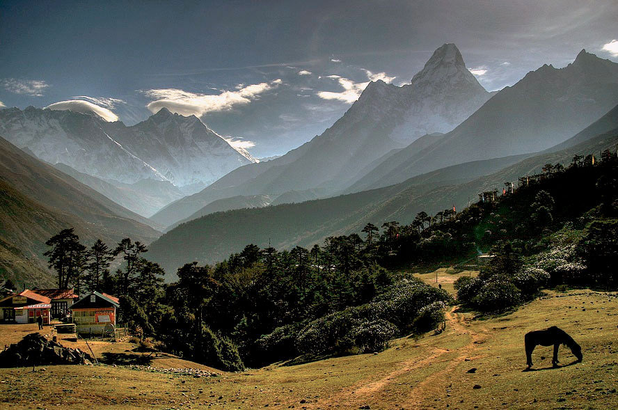 Natural Treasure Discovered in the Himalayas