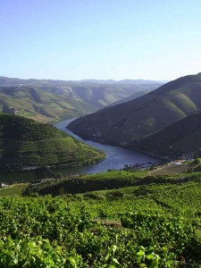 Portugal's Douro River Valley of Wine
