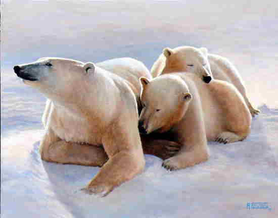 Arctic Mother and Cubs