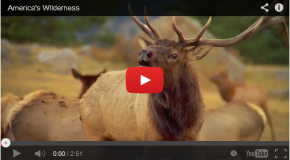 Video: Defining The Wilderness Act