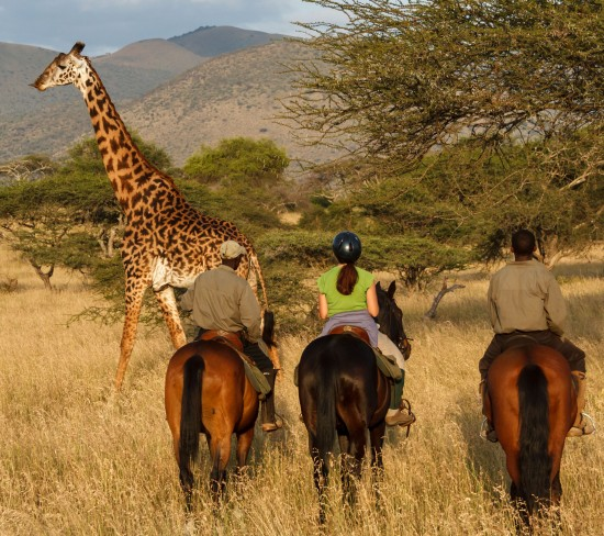 Active Africa! Multi-Sport Adventure Safari in Kenya
