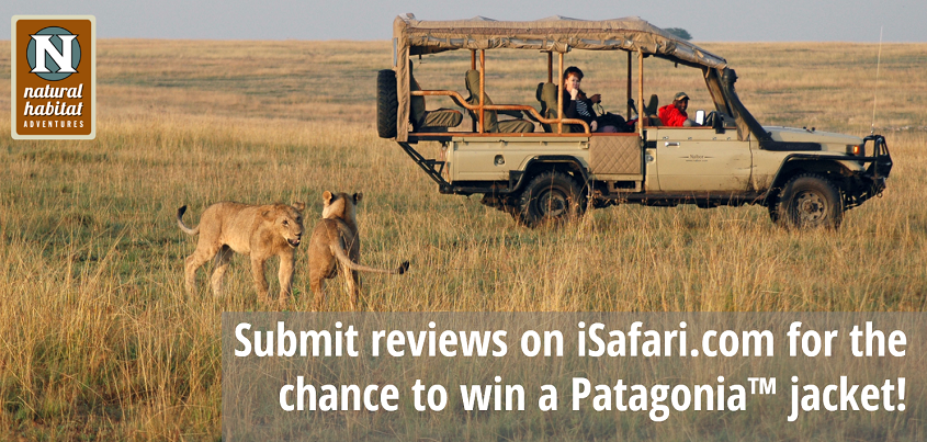 iSafari Reviews