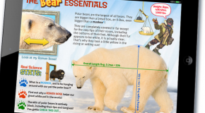 Nat Hab polar bear trip inspires the world's first interactive polar bear almanac