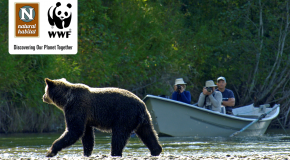Introducing the new official travel blog of WWF and Natural Habitat Adventures!
