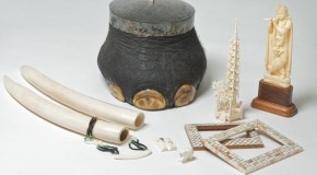 Help Stop Wildlife Crime: How to Buy Environmentally Friendly Souvenirs