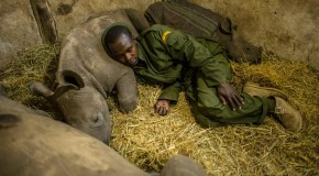 A Heart-warming Photo Essay: Kenyans Protecting their Wildlife