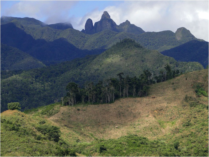 The remote western boundary of Marojejy National Park on the island of Madagascar. © Rachel Kramer/WWF-US