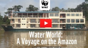 Video: Water World – A Voyage on the Amazon
