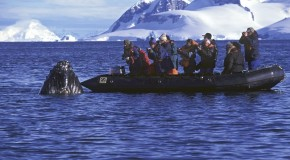 Inside Antarctica: Ship Life on an Antarctica Cruise – Then and Now