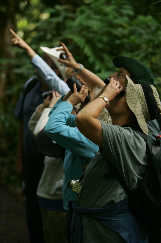 Guests learn about flor and fauna on a Costa Rica ecotour, ecotourism