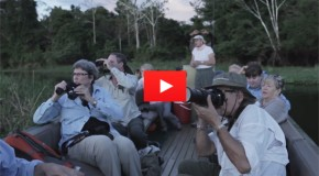 Video: A 680 Mile Journey Through the Amazon