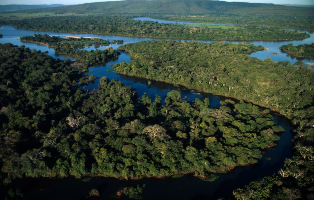Aerial view of the Pantanal in Brazil. Photo (c) Juan Pratginestos/WWF-Canon