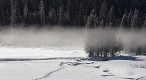 New Snowmobile Lottery System: Will It Alter Yellowstone's Winter Solitude?
