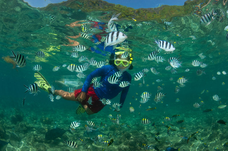 Best Snorkel Trip: How To Choose