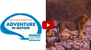 Video: WWF Adventure Film Will Inspire You to Visit Namibia