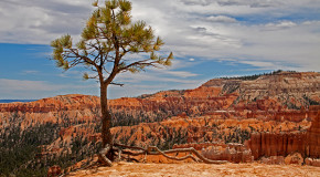 Travel Tale: High Hopes in the Southwest Canyons