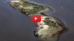 Video: BP's Oil Spill—Lost Islands and Relocated Birds