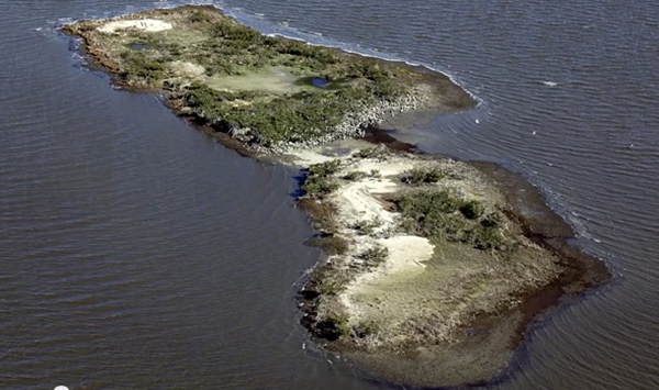 "Cat Island, Louisiana, was a 5.5-acre refuge for a variety of shorebirds. From the video ""Gulf Oil Spill Disintegrated this Island,"" ©National Geographic"