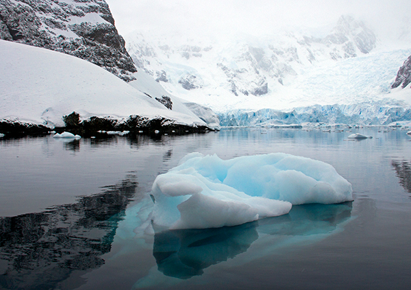 In such clear water, the bases of icebergs could be seen from the surface. ©Candice Gaukel Andrews