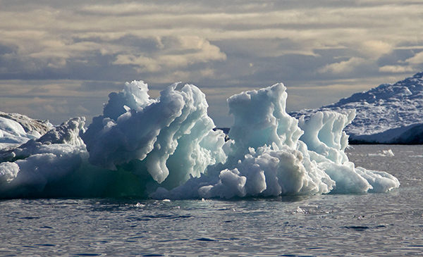 """Columns"" on icebergs appear as the ice melts unevenly. ©Candice Gaukel Andrews"