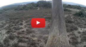 Video: New Rhino Cam Could Help Thwart Poachers
