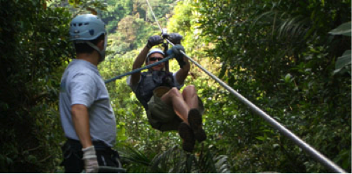 Zipline Sky Trek adventure through the rainforest canopy