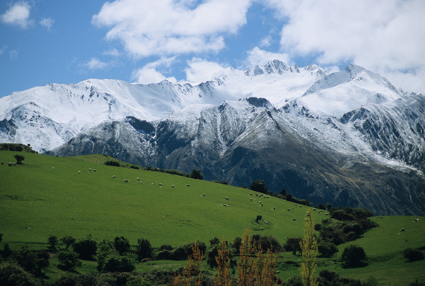 New Zealand holds fairytale, pastoral meadows and dreamlike, snowy mountains. ©Mark Hickey
