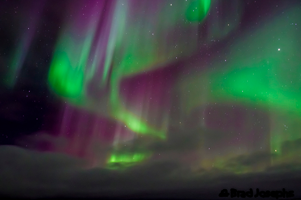Variations in color are due to the type of gas particles that are colliding. Oxygen molecules located about 60 miles above the Earth produce the most common color, yellowish-green. Rare, all-red auroras are caused by high-altitude oxygen, at heights of up to 200 miles. Nitrogen produces a blue or purplish-red aurora. ©Brad Josephs