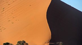 Five Can't-Miss Things to Do in Namibia