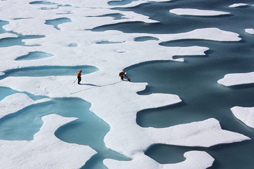 In the Arctic, however, sea ice is rapidly disappearing. ©NASA Goddard Space Flight Center