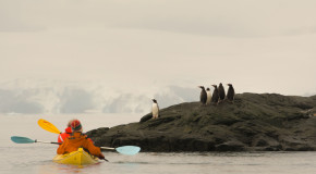 What to Pack on Your Active Antarctica Sailing Adventure