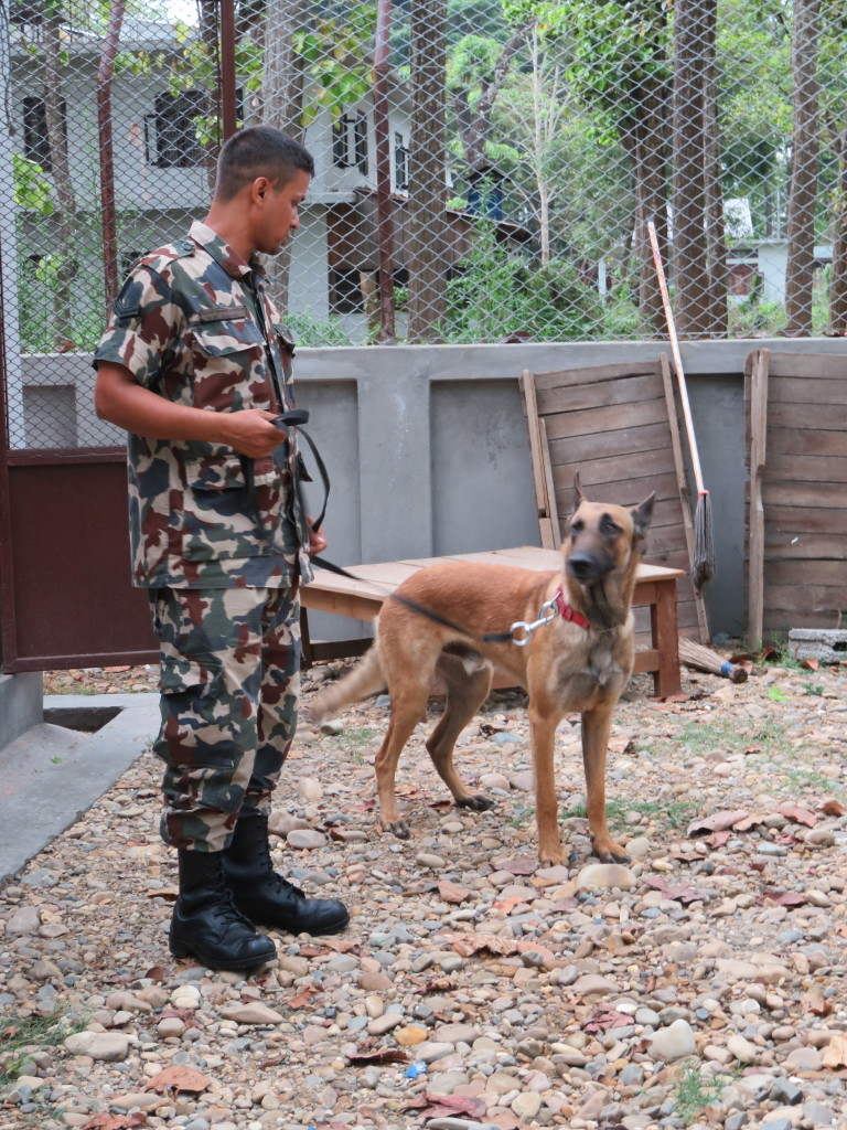 "Sniffer dog trainer from the Nepali Army with ""Murray."" Photo taken at Chitwan National park headquarters days before the earthquake. © Rhonda Barnes Kloth/WWF-US"