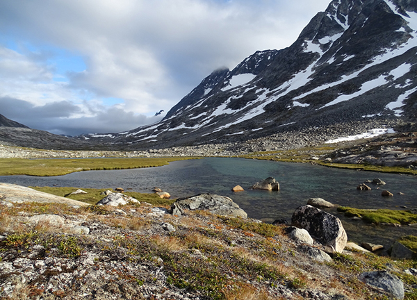 Greenland Nature Adventures