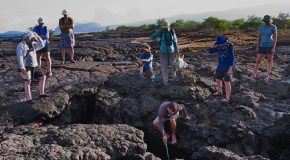 Fishing for Trash: How Travel Keeps Galapagos National Park Pristine
