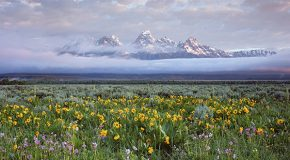 Six Quick Facts About Grand Teton National Park