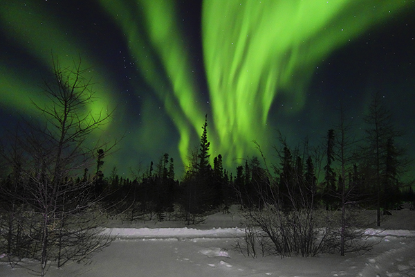 Aurora Borealis Display in Churchill, Manitoba