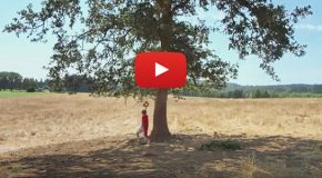 "Video: Rediscovering Shel Silverstein's ""The Giving Tree"""