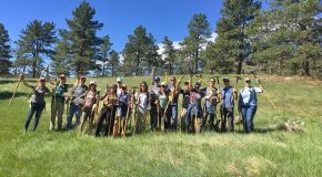 Nat Hab Employees Help Build a Trail in Boulder County