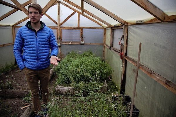 EcoCamp Patagonia has one greenhouse, where the kitchen staff is currently growing herbs.