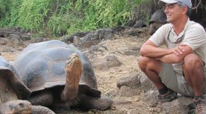 Q-and-A: Guides of the Galapagos