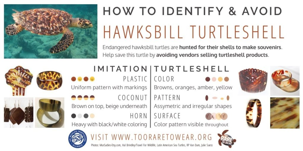 How to Identify Tortoiseshell Souvenirs