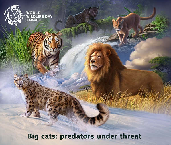 "World Wildlife Day 2018 - ""Big cats: predators under threat"