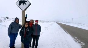 Traveler Story: Arctic Cultures Beyond Expectations