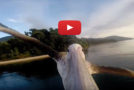 Video: Watch as a Pelican in Africa Learns to Fly Again
