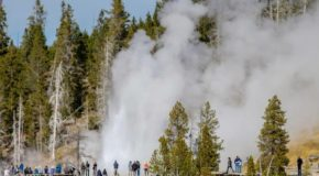 Traveler Story: Geysers and Hot Springs of Yellowstone