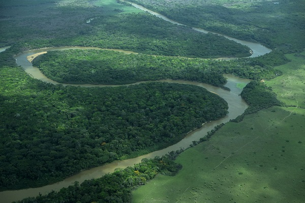 Rupununi River in Iwokrama National Park