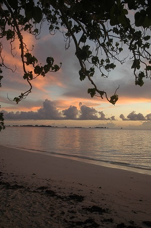 Sunset in Palau.