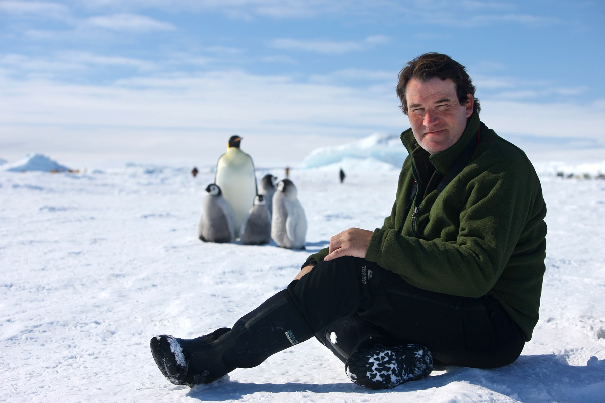Our Planet director with penguins.