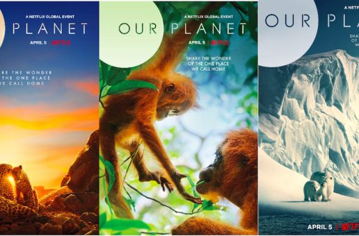 The 'Our Planet' Species You Can See with Nat Hab & WWF