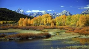 Why Fall is a Great Time to Visit Yellowstone National Park